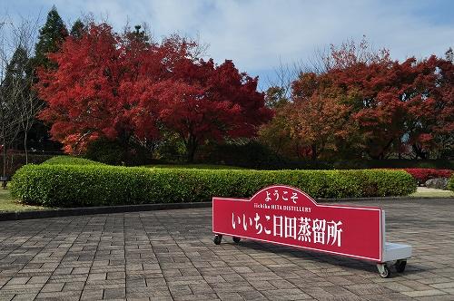 紅葉祭12014.11.16