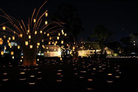 今年初めて、日本遺産「咸宜園」にこんなに綺麗な明かりが灯りました